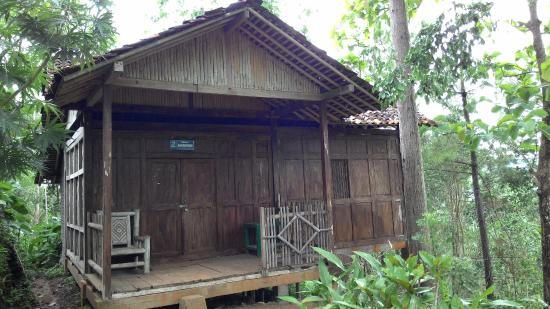Things To Do in Waduk Sermo, Restaurants in Waduk Sermo