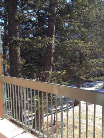 Douglas Fir Resort & Chalets : Taken from our room, #176
