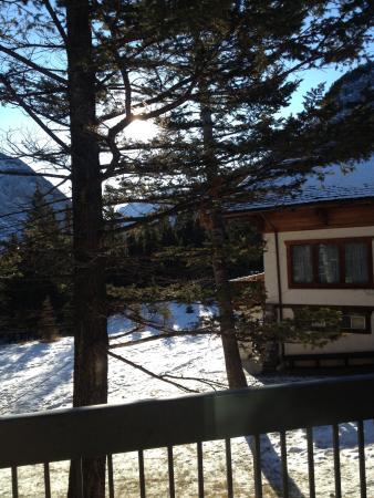 Douglas Fir Resort & Chalets: From balcony of #176