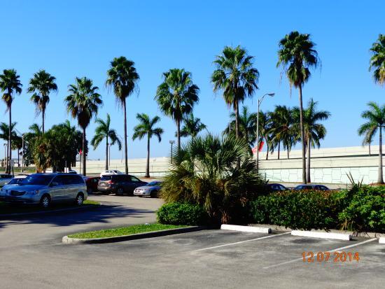 La Quinta Inn & Suites Miami Airport East: outside the hotel