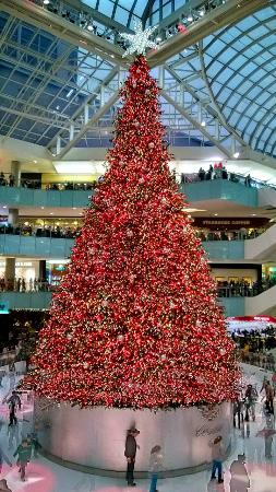 galleria dallas apparently the largest indoor christmas tree in the world - Biggest Christmas Tree In The World