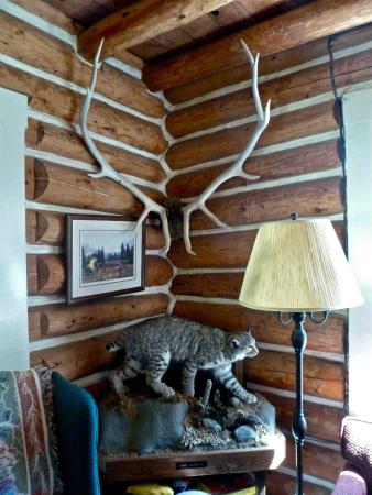 Wapiti Meadow Ranch: corner of Lodge sitting room
