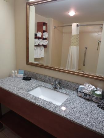 Hampton Inn Lehighton (Jim Thorpe Area): Bathroom