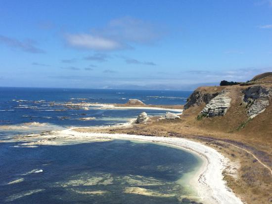 The White Morph Heritage Collection: Kaikoura coastline