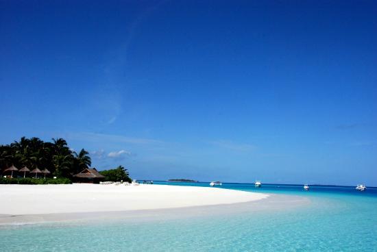 Malediwy: Beach of a tourist resort in the Maldives