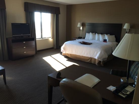 Hampton Inn & Suites Phoenix Glendale - Westgate : King Suite