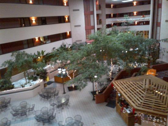 Viscount Suite Hotel: View down into Atrium Space