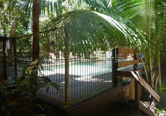 Piscine picture of cape tribulation beach house cape for Alarme piscine home beach