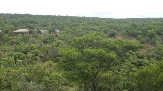 Shakila Safari Bush Camp