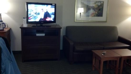 Aspen Suites Rochester: Open livingroom in handicapped suite