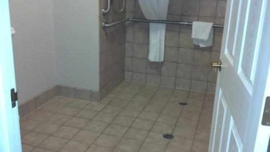 Aspen Suites Rochester: Large bathroom in handicapped suite