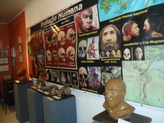 Museu Internacional de Ufologia, Historia e Ciencia - Victor Mostajo