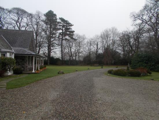 Tyddyn Llan: Driveway