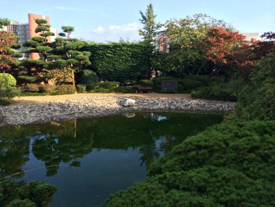 vue jardin japonais 1 - Jardin Japonais Le Havre