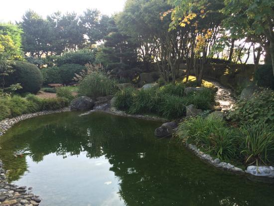 vue jardin japonais 3 - Jardin Japonais Le Havre