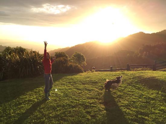 Nightingale Falls Farmstay Retreat: Am I in paradise?