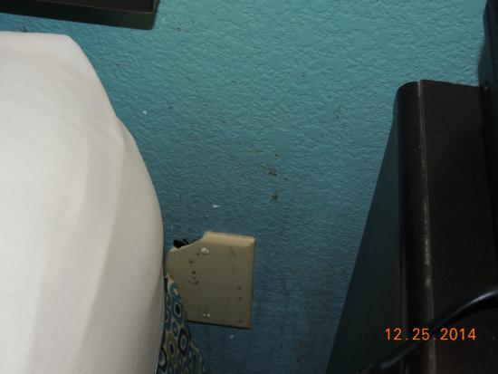 wall between bed and night stand picture of la quinta inn suites rh tripadvisor com