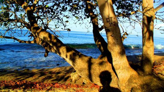 Rincon Inn: chilling at the beach