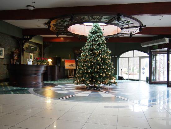 Hotel Anders: recepcja