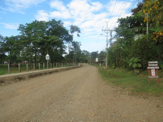 Hospedaje El Bosquecito: The road just outside of the driveway of El Bosquecito