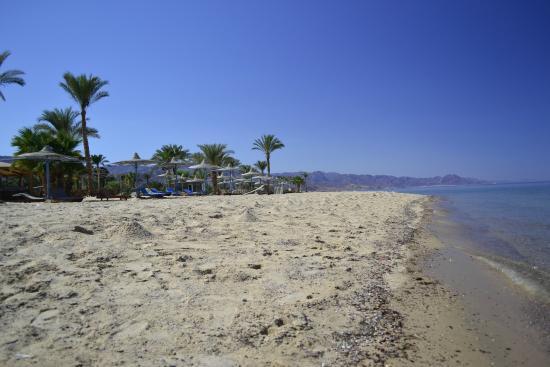 Helnan Nuweiba Bay Resort: Пляж