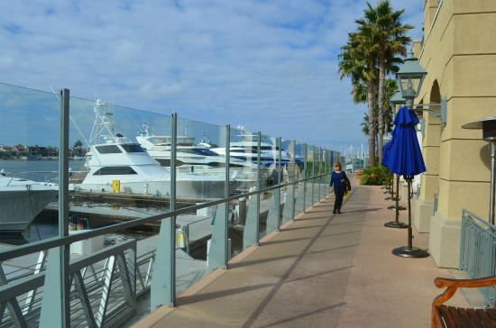 Marina New Port Beach Photo De Balboa