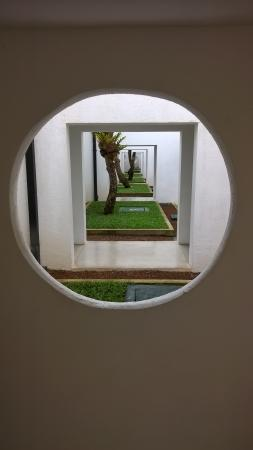 Gardens between rooms