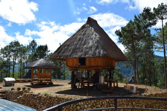 Sagada Bilza Lodging One Of Our Traditional Nipa Huts At Lodge