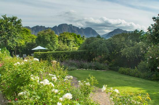 The Garden House : Garten