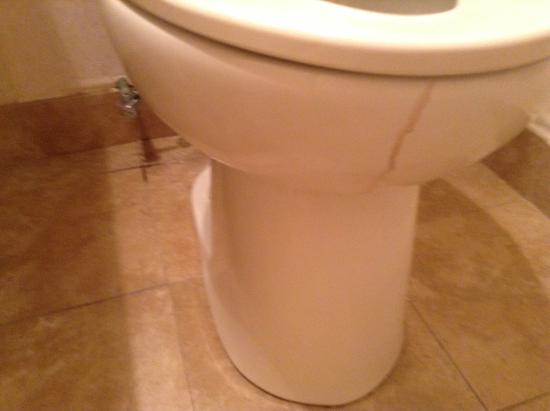 Econo Lodge: blood on toilet