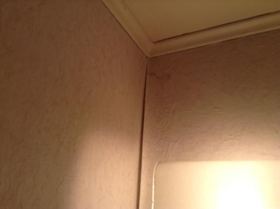 Econo Lodge : cob webs all over ceiling