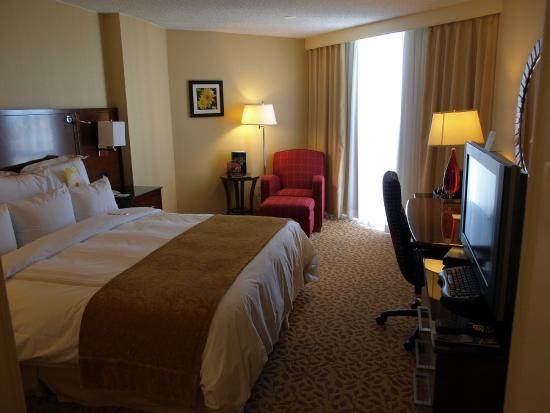 Albuquerque Marriott : Room
