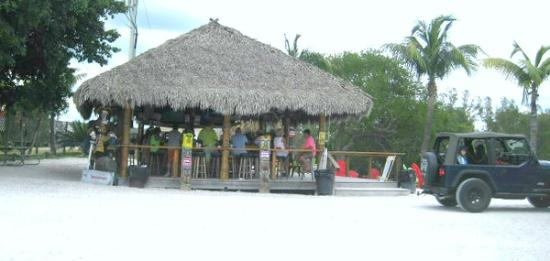 From our table picture of casey key fish house osprey for Casey key fish house