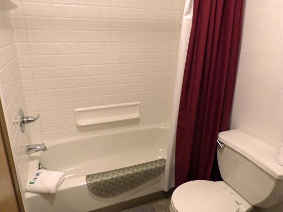The Alpine Motel : Bathroom
