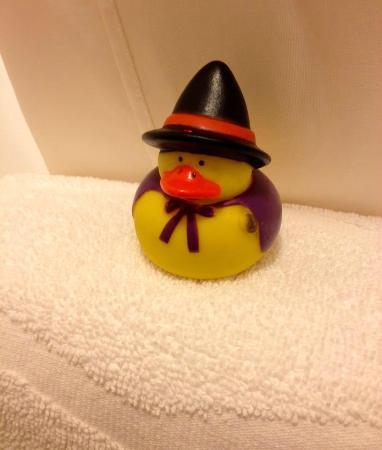 Hampton Inn & Suites Warren: Rubbery ducky left in the room (around Halloween)