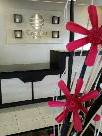 Rodeway Inn I-95 North: Beautifully Renovated Lobby