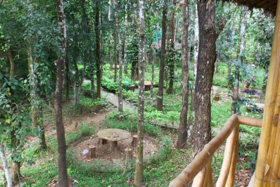 Pepper Green Village: Outside garden and play area