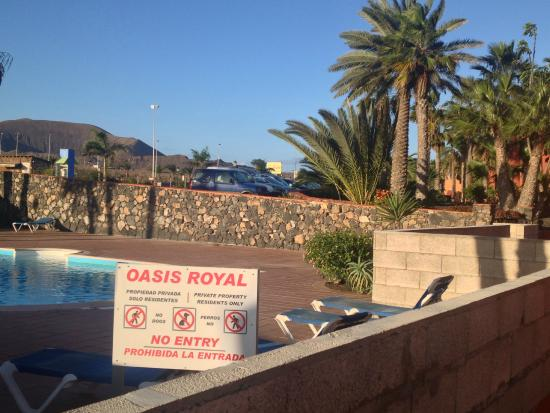 Oasis Royal: Pool in the foreground, race track in the background