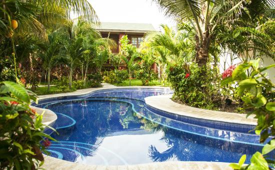 Hotel Honolulu: Piscina y zona verde
