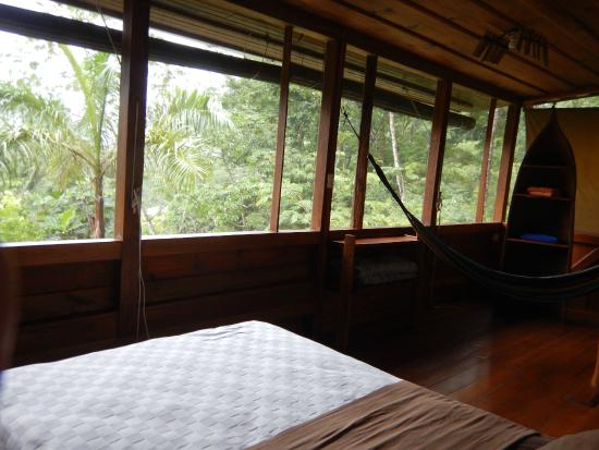 Omega Tours Eco Jungle Lodge: room