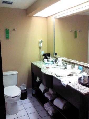 Hampton Inn Phoenix-Airport North: Bathroom