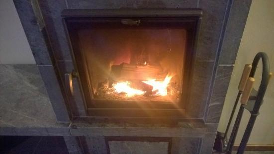 Ski-Inn MastonAitio Cabins: log fire