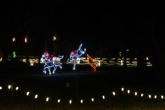 Hopelands Gardens: More Lights