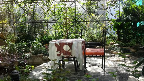 Monteverde Lodge U0026 Gardens: Butterfly Room