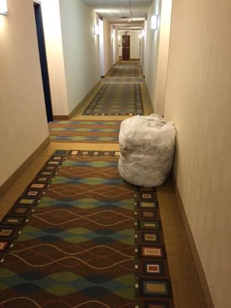 HYATT house Boston/Waltham: This dirty laundry stayed here overnight