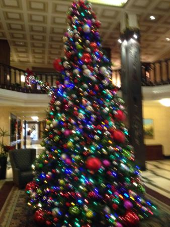 Nice Christmas Decorations christmas decorations - picture of the chase park plaza, saint