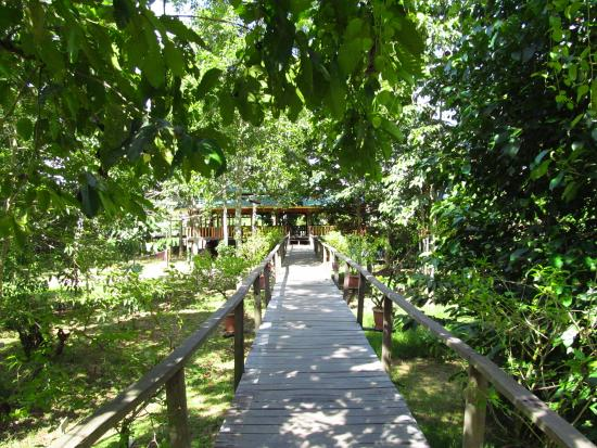 Bilit Adventure Lodge: walkway to rooms