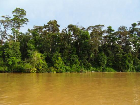 Bilit Adventure Lodge: river view