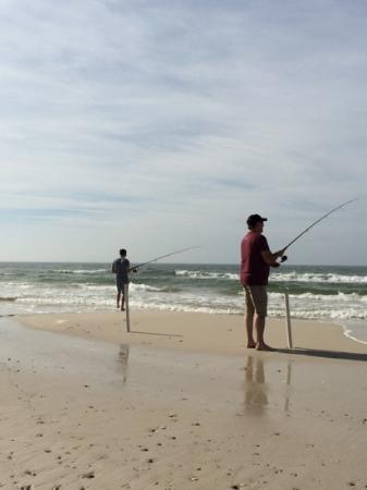 Surf fishing cape san blas picture of cape san blas for Surf fishing san diego