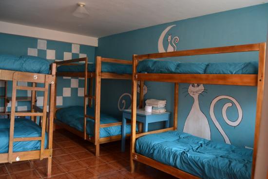 Chaska Wasi Hostel: dorm6
